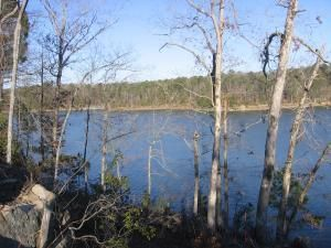 LOT #19 EAGLE POINTE, Double Springs, AL 35553