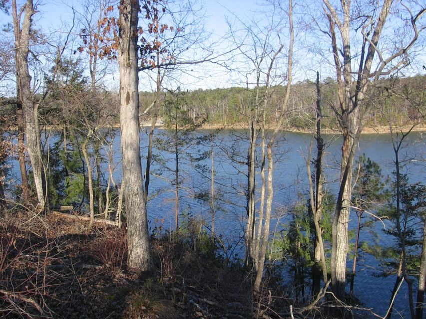 LOT #20 EAGLE POINTE, Double Springs, AL 35553