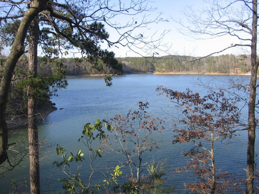 LOT #17 EAGLE POINTE, Double Springs, AL 35553