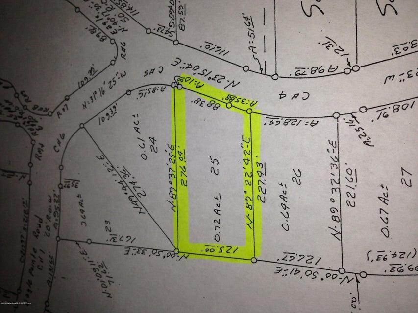 LOT #25 EAGLE POINTE LANDING, Double Springs, AL 35553