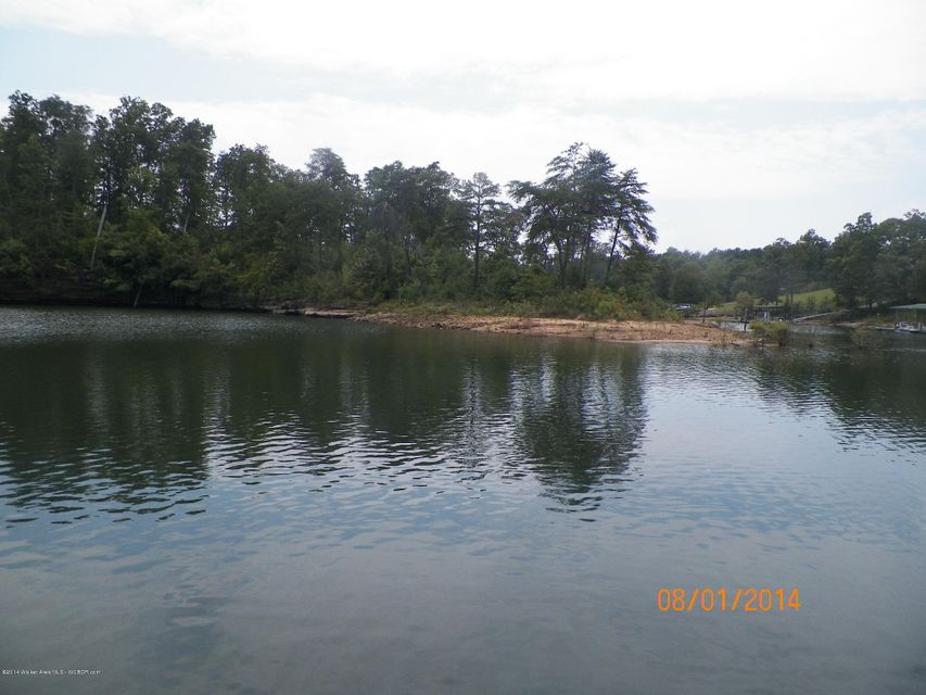 LOT 16 BEAR BRANCH COVE, Arley, AL 35541