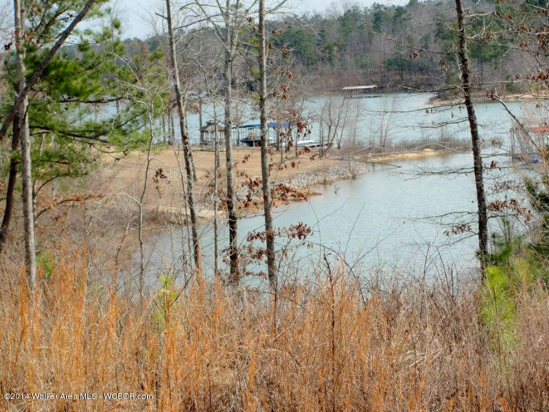 LOT 72&73 STONEY POINTE LANDING, Double Springs, AL 35553
