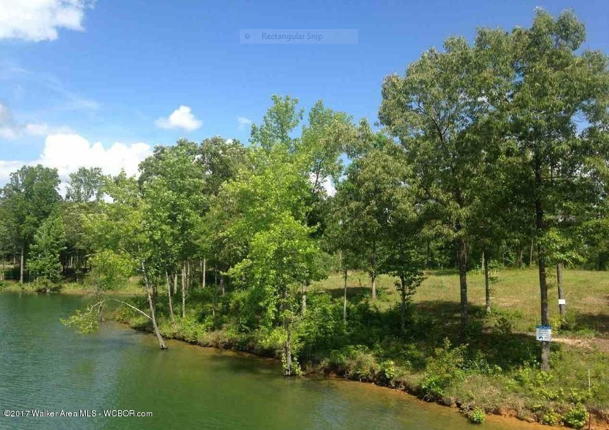 LOT 93 LAKESHORE WEST, Crane Hill, AL 35053