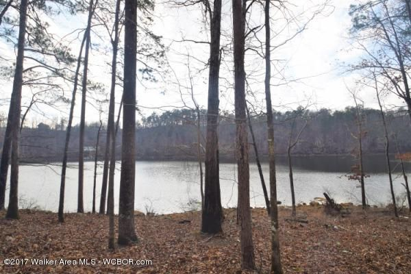 LOT 4 COUNTY ROAD 108, Arley, AL 35541