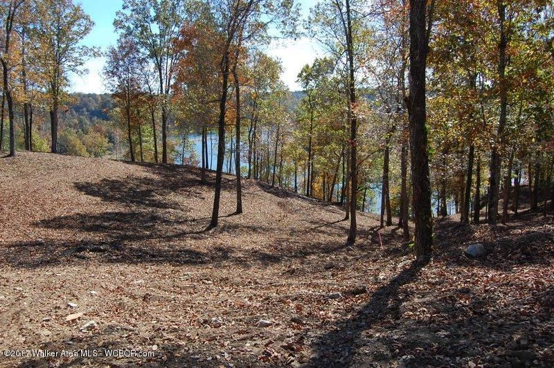 LOT 49 COUNTY ROAD 898, Crane Hill, AL 35053