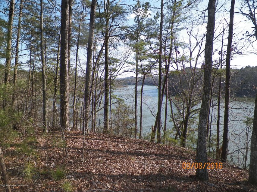 LOT 3 ROCK CREEK PENINSULA, Arley, AL 35541