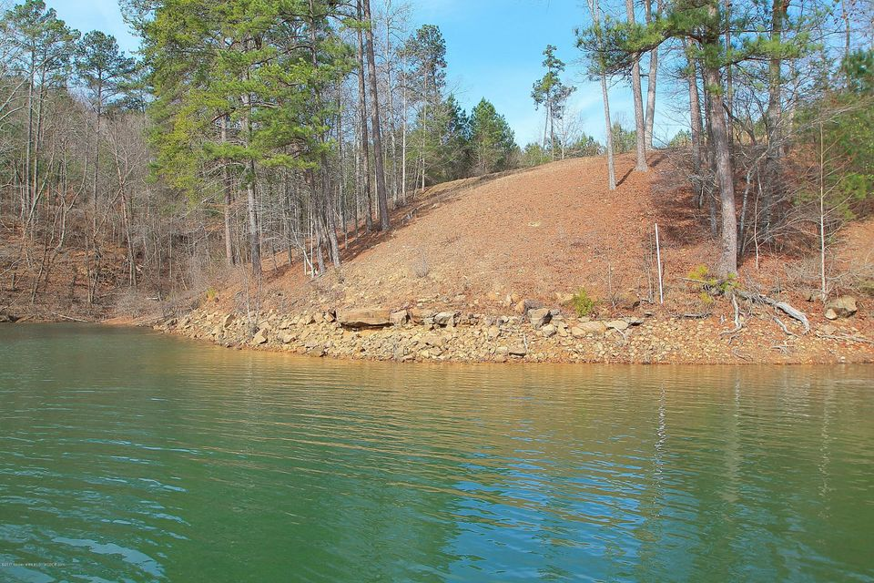 LT 12 & 13 LAKE POINTE DR, Arley, AL 35541