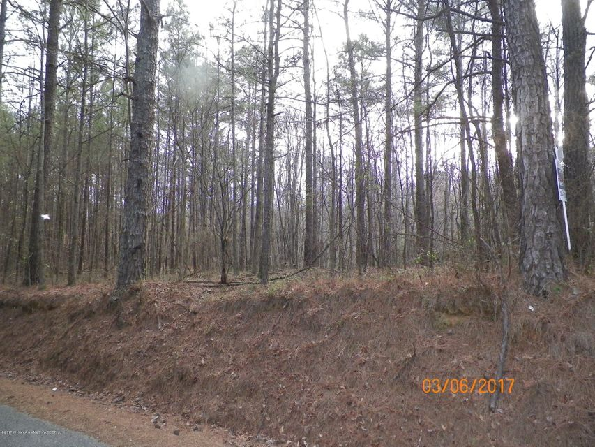 CO RD 351, Crane Hill, AL 35053