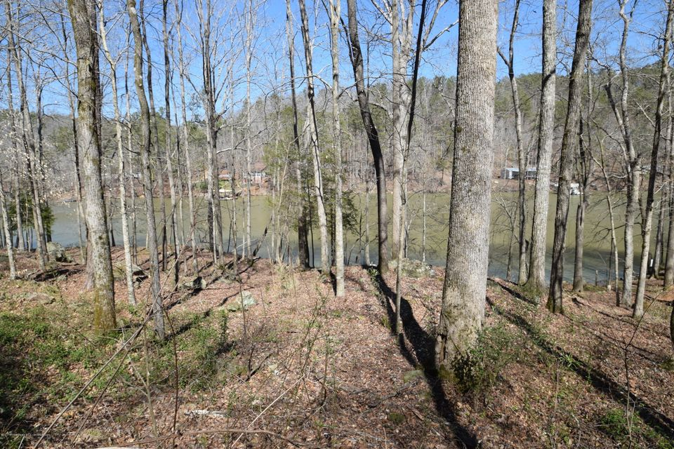 LOT 12 NORTHPOINTE DRIVE, Arley, AL 35541