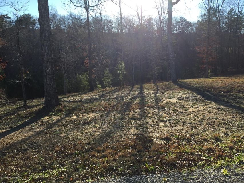 LOT 14 DREAM CATCHER CIR., Arley, AL 35541