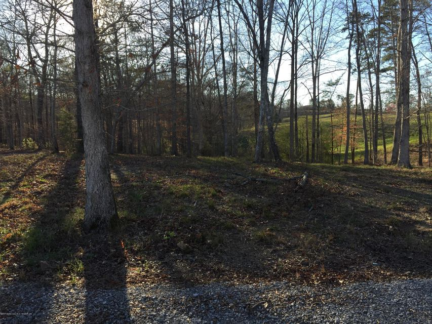 LOT 17 DREAM CATCHER CIR., Arley, AL 35541