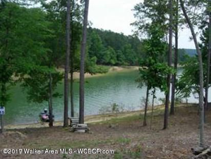 LOT 15 STILLWATER COVES, Double Springs, AL 35553