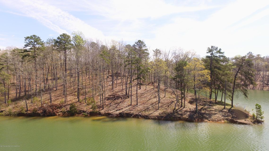 LOT 29 ALBATROSS WAY, Arley, AL 35540