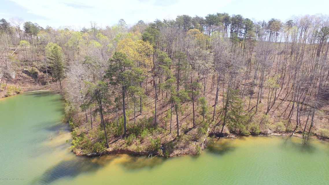 LOT 37 OSPREY AVE, Arley, AL 35540