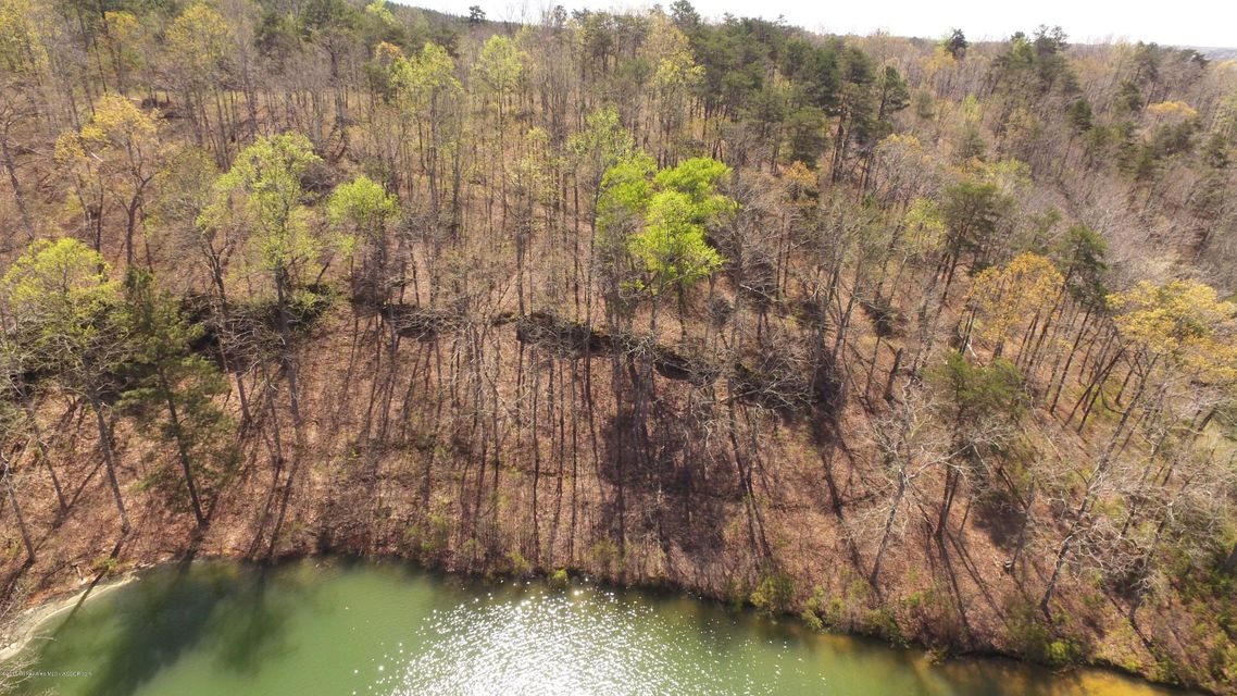 LOT 43 OSPREY AVE, Arley, AL 35540