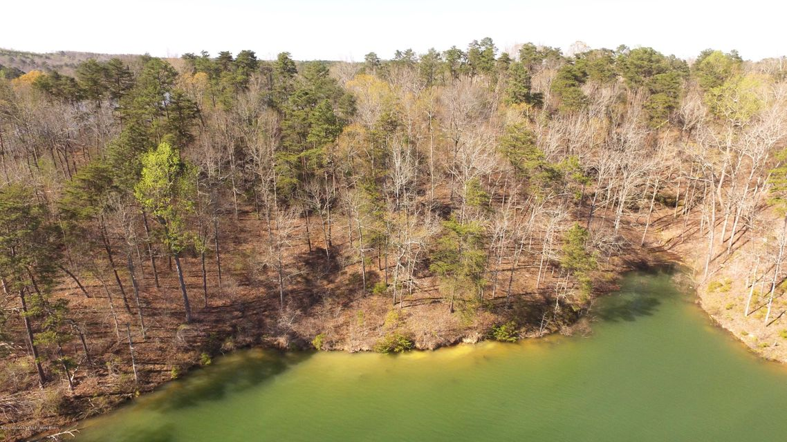 LOT 53 FLAMINGO, Arley, AL 35540