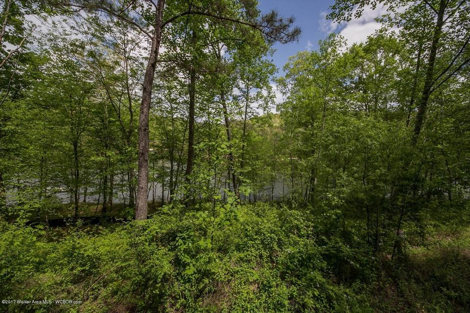 LOT 9 RIDGE POINT DRIVE, Arley, AL 35541