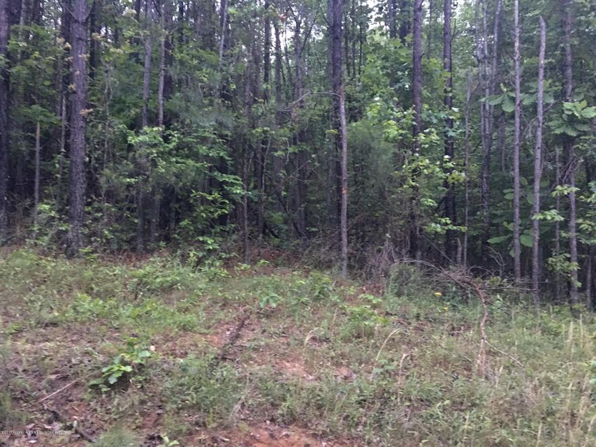 LAKE POINTE Dr, Arley, AL 35541