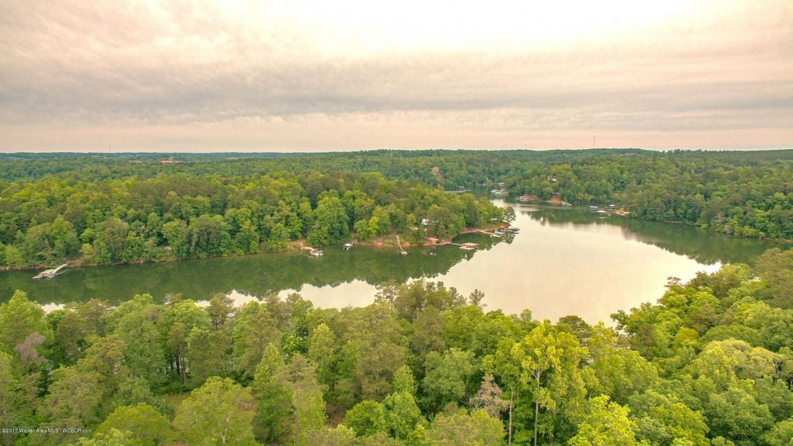 LOT 29 ROCK CREEK PENINSULA, Arley, AL 35541