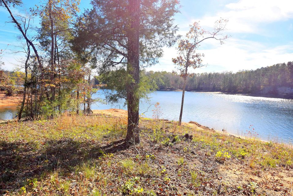 LOT 1 PENINSULA PHASE IV, Houston, AL 35572