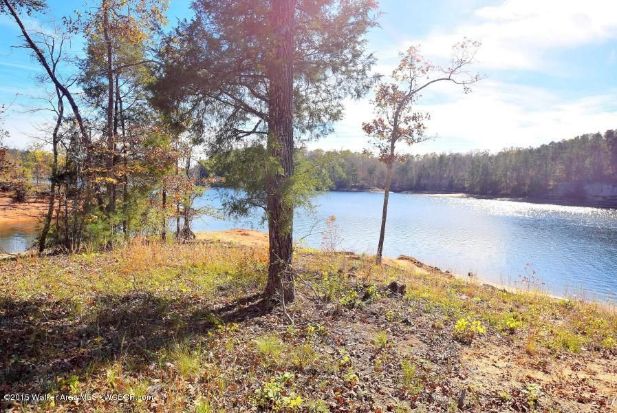 LOT 14 PENINSULA PHASE IV, Houston, AL 35572