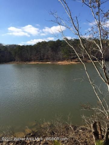 LOT 46 RIDGE AT ROCK CREEK, Arley, AL 35541
