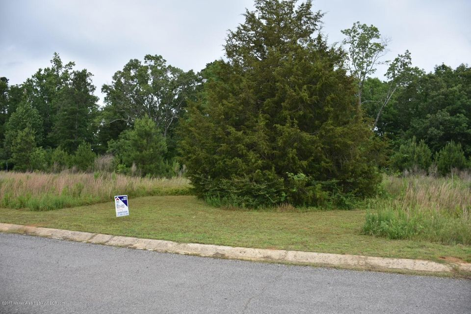 DISMAL (POPLAR RIDGE), Arley, AL 35541