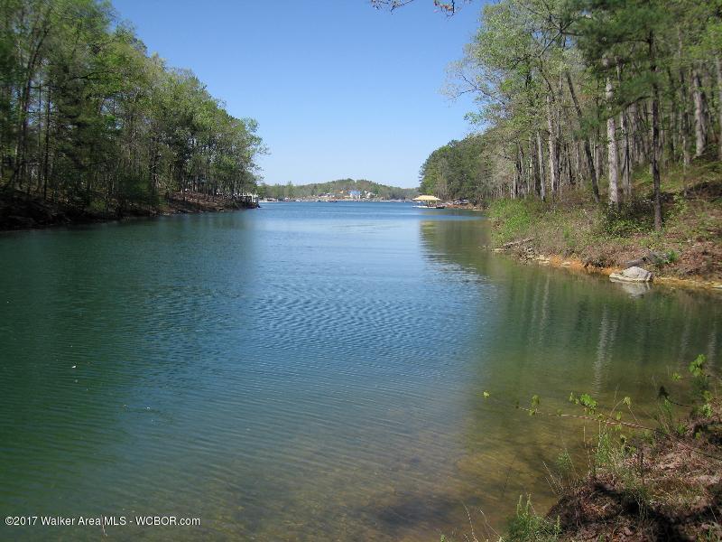 LOT 6 BLUE WATER POINTE, Jasper, AL 35504