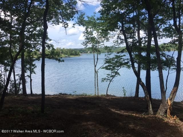 LOT 105 STONEY POINTE LANDING, Double Springs, AL 35553