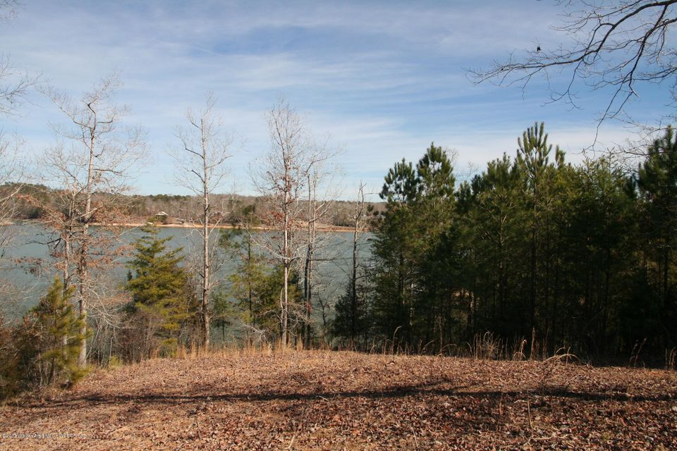 LOT 3 BUCK WILLIAMS LANE, Double Springs, AL 35553