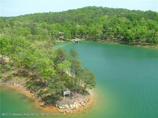 LOT # 10 PELICAN, Arley, AL 35541