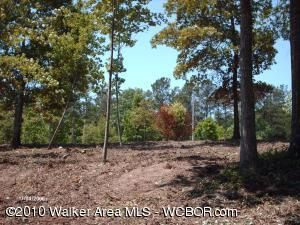 LOT # 3 CR-106, Logan, AL 35098