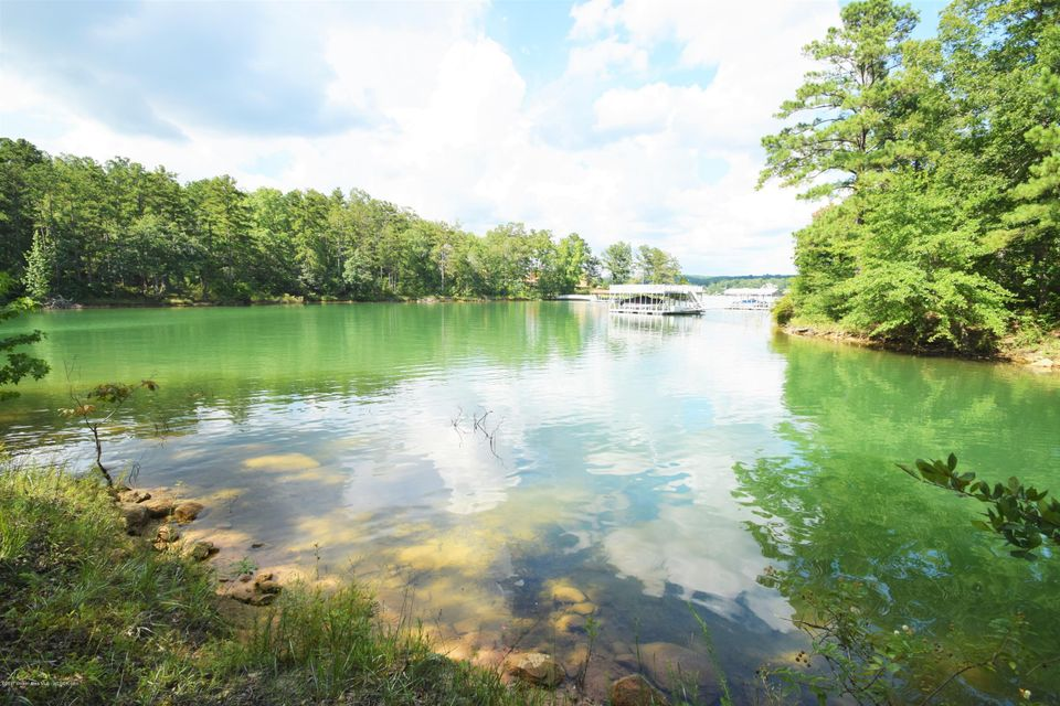 LOT 41 STONEY POINTE, Double Springs, AL 35553