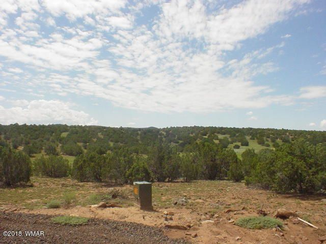 Land For Sale Lot 1D N8690 In Concho Valley AZ 85924