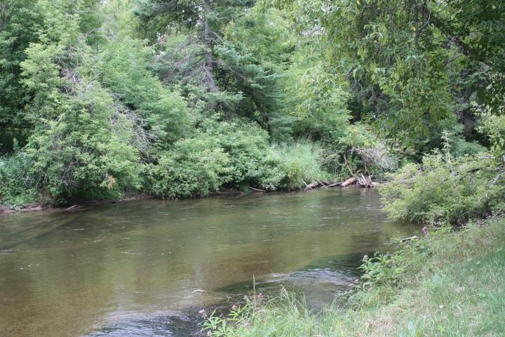 5503 Schultz Drive, Indian River, MI 49749