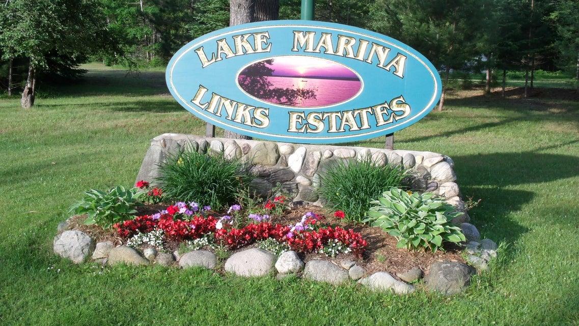 Lake Marina Drive, Indian River, MI 49749