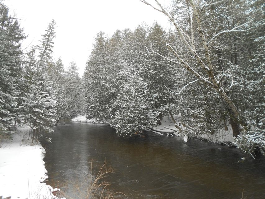White Road, Indian River, MI 49749