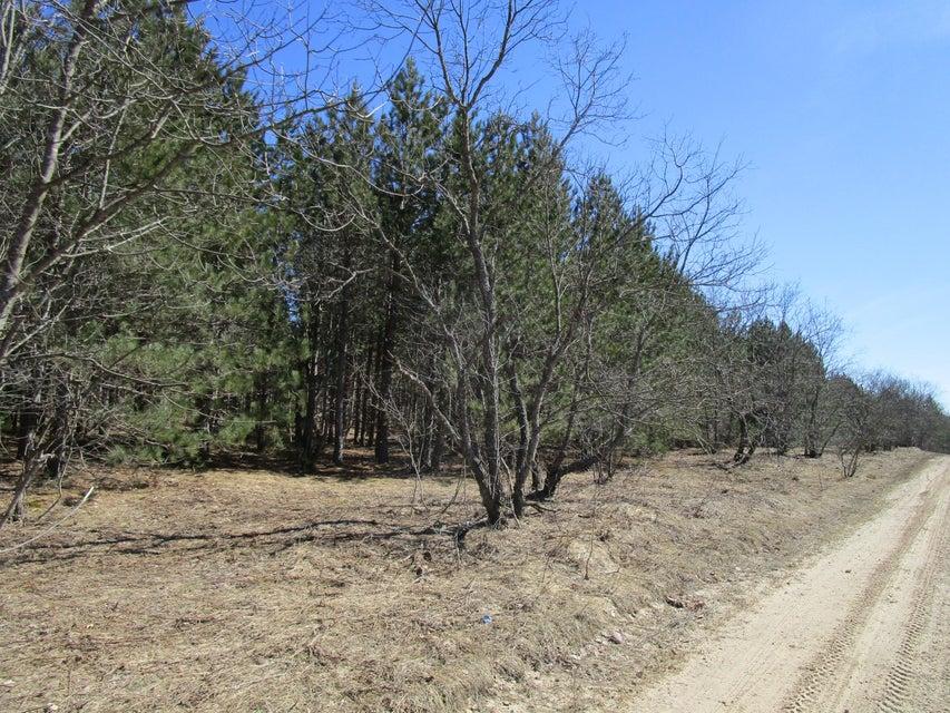 00 Tittabawasse Trail, Gaylord, MI 49735