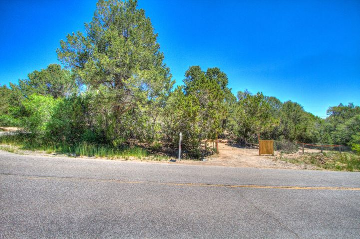 11 Sycamore Drive, Cedar Crest, NM 87008