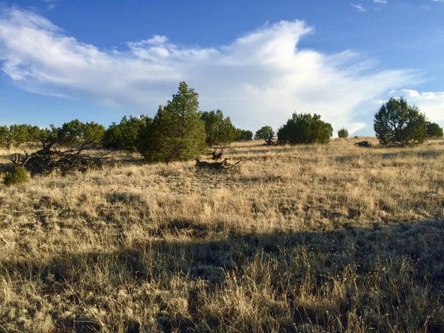 195 Campfire Road, Magdalena, NM 87825