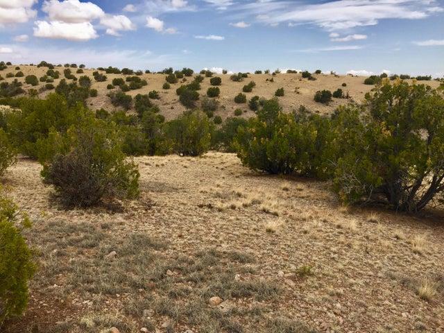81 Pinon Springs Ranch, Magdalena, NM 87825