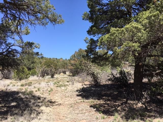 0 County Line Road, Edgewood, NM 87015