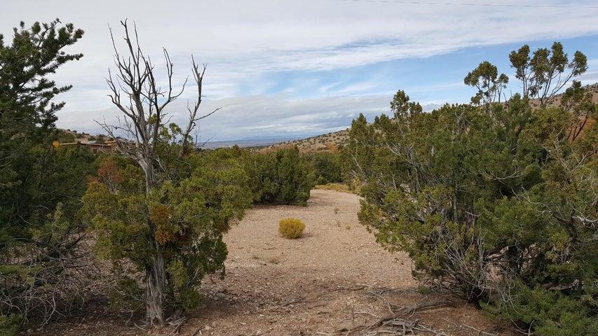 Tres Amigos Road, Placitas, NM 87043