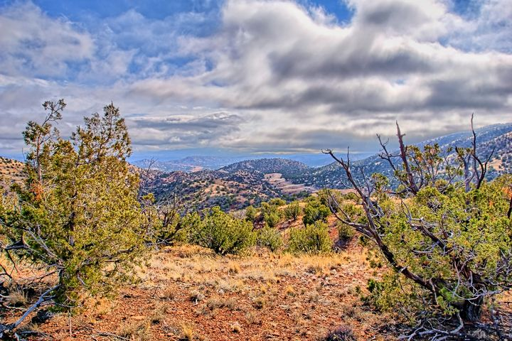 142 Diamond Tail Lot 45, Placitas, NM 87043