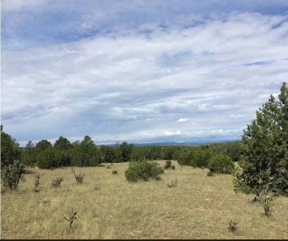 0 Duran Lane, Santa Rosa, NM 88435