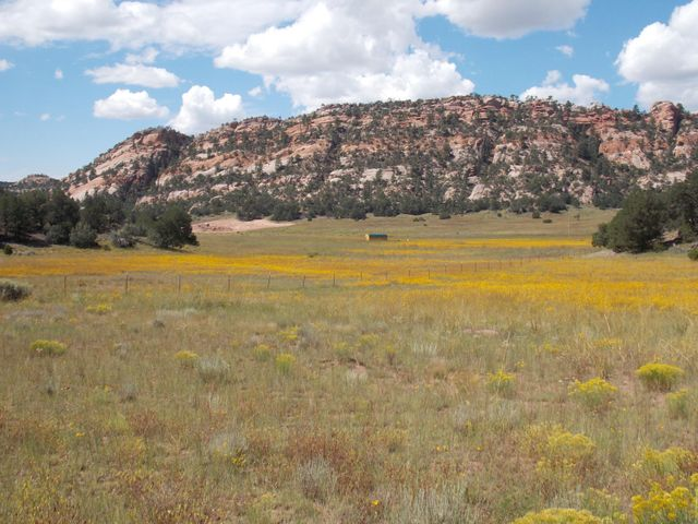 0 Box S Ranch Road, Ramah, NM 87321