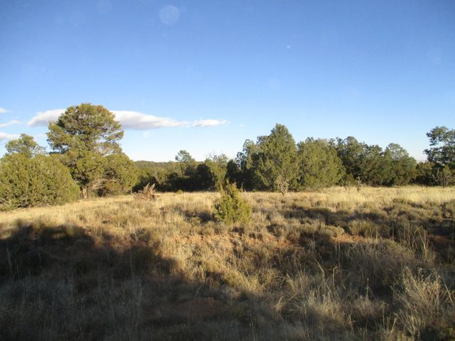 Lot 8 Block 1 Woodland Hills, Edgewood, NM 87015
