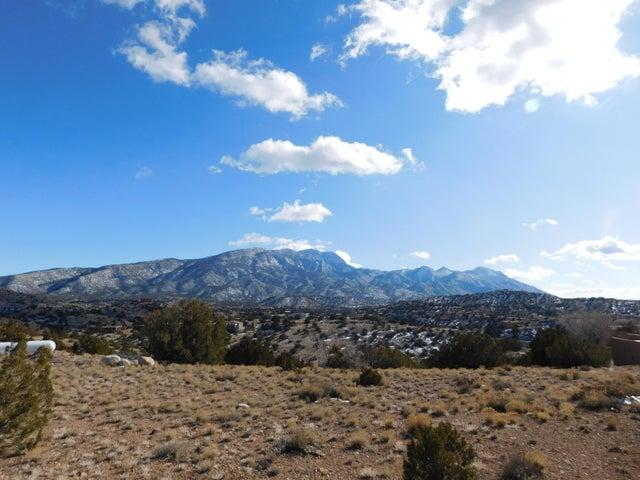 4 Tejon Canon Road, Placitas, NM 87043