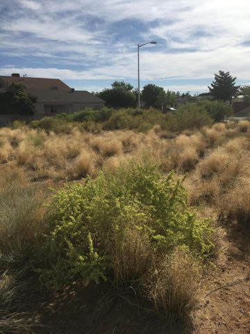 Camelot Boulevard SW, Los Lunas, NM 87031