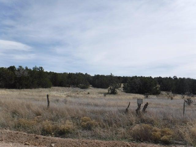 0 Martinez Road, Edgewood, NM 87015